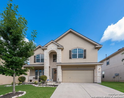 San Antonio Single Family Home New: 25819 Big Bluestem