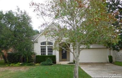 San Antonio Single Family Home New: 511 Turtle Hl