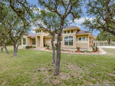 Spring Branch Single Family Home New: 519 Mystic Breeze
