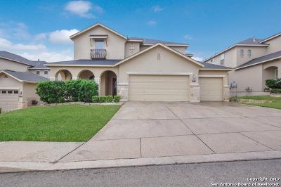San Antonio Single Family Home For Sale: 2906 Elm Tree Park