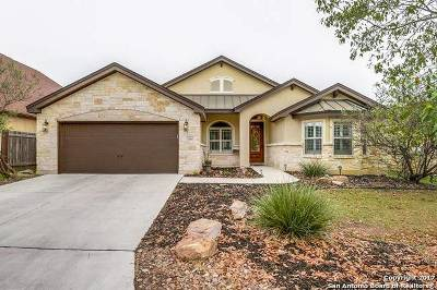New Braunfels Single Family Home New: 2650 Fairwood Dr