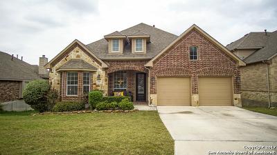 San Antonio Single Family Home New: 2519 Portola Vw