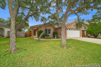 San Antonio Single Family Home New: 9223 Sunlit Pt