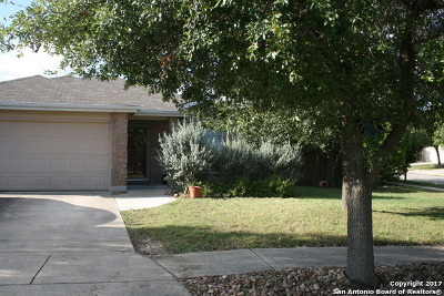 San Antonio Single Family Home New: 9759 Country Shadow