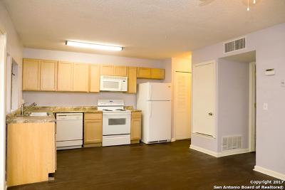San Antonio Single Family Home New: 1340 Churing Dr