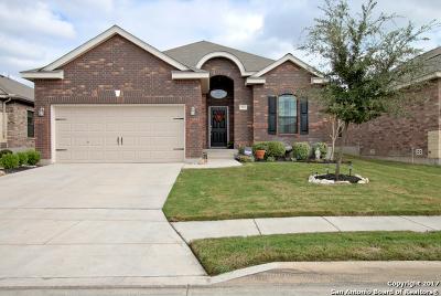 Converse Single Family Home New: 8823 Appaloosa Pass