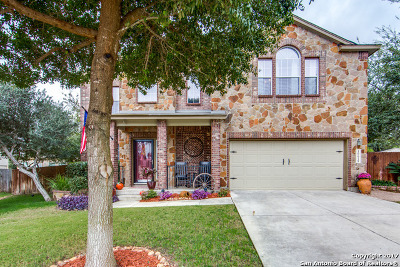 Helotes Single Family Home New: 10618 Clover Canyon