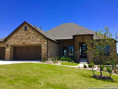 San Antonio Single Family Home New: 21334 Rembrandt Hl