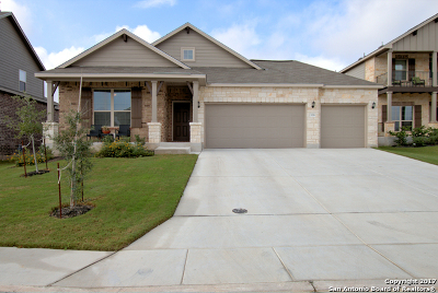 New Braunfels Single Family Home New: 336 Green Heron