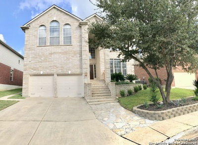 San Antonio Single Family Home New: 3019 Sonora Mesa