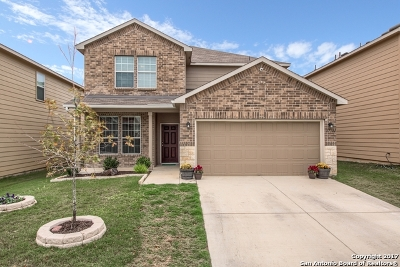 Boerne Single Family Home New: 27341 Paraiso Mnr