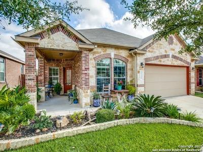 San Antonio Single Family Home New: 27338 Trinity Cross