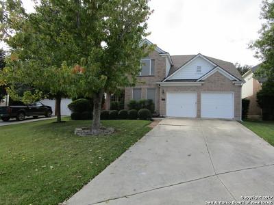San Antonio TX Single Family Home New: $269,000