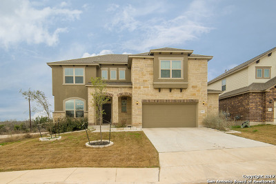 San Antonio Single Family Home New: 8923 Monument Parke