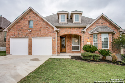 Helotes Single Family Home New: 8711 Roswell Ridge
