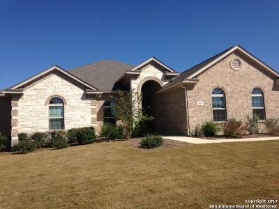 Fair Oaks Ranch Single Family Home New: 30353 Satterfeld Circle