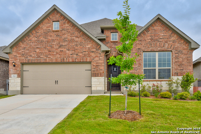 San Antonio Single Family Home New: 13611 Sunnydale Pass