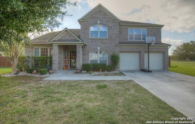 Seguin Single Family Home For Sale: 219 Las Brisas Blvd