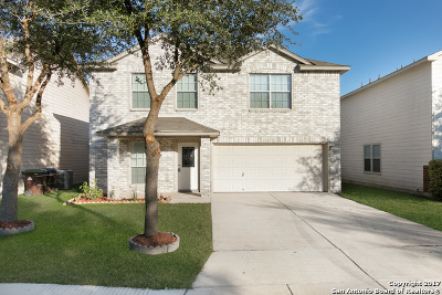 San Antonio Single Family Home New: 2634 Gato Del Sol
