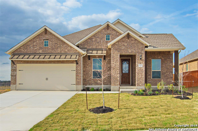 Cibolo Single Family Home For Sale: 821 Silver Fox