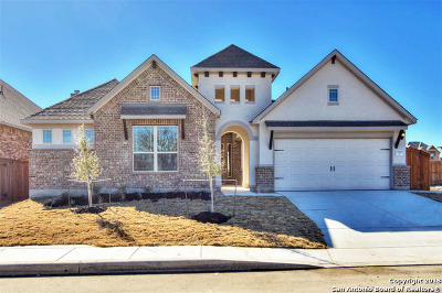 San Antonio Single Family Home New: 7519 McKinney Hills