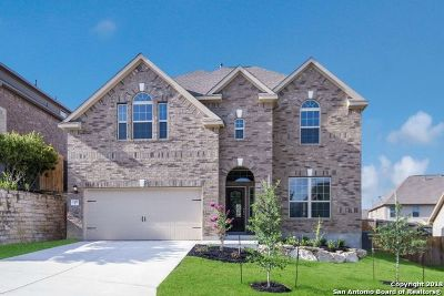 San Antonio Single Family Home New: 2507 Canon Perdido