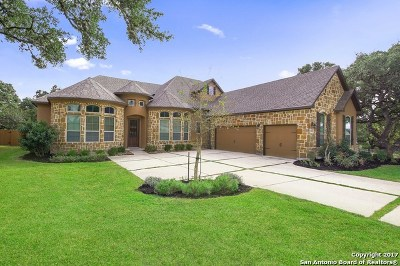 Boerne Single Family Home New: 26206 Tawny Way