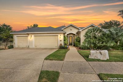San Antonio Single Family Home New: 707 Rio Spgs