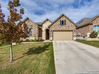 Helotes Single Family Home New: 16323 Bonalva