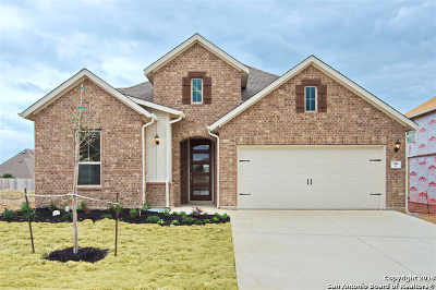 Cibolo Single Family Home For Sale: 816 Foxbrook Way