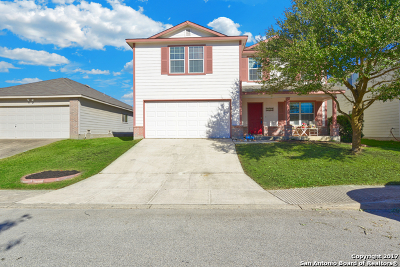 San Antonio TX Single Family Home New: $219,900