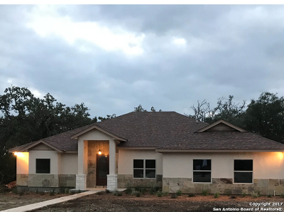 Single Family Home For Sale: 205 Starburst