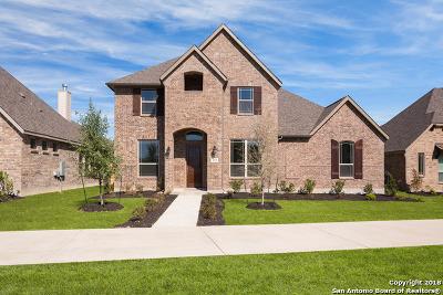 Boerne Single Family Home Price Change: 213 Champion Boulevard