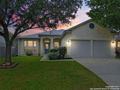 Helotes Single Family Home For Sale: 12915 Paint Brush