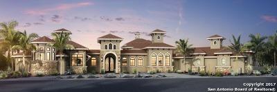 San Antonio Single Family Home For Sale: 23010 Daniel Ridge