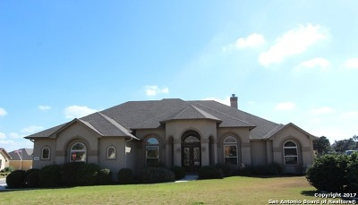 Boerne Single Family Home For Sale: 10402 Colts Foot