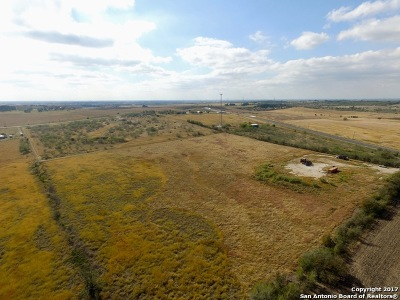 Seguin Farm & Ranch For Sale: 11099 State Highway 123