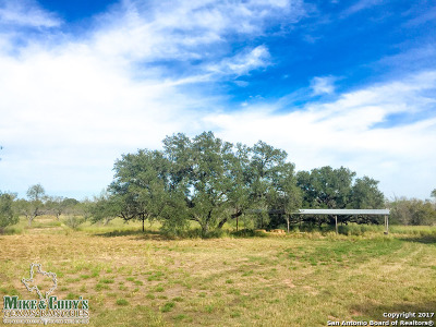 Atascosa County Farm & Ranch For Sale: 12060 State Highway 16