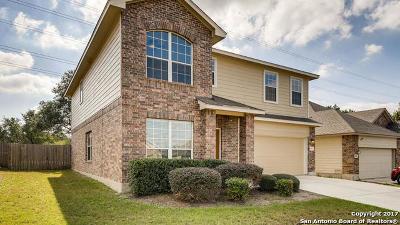 San Antonio Single Family Home For Sale: 5430 Southern Oaks