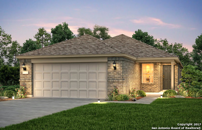 San Antonio Single Family Home Back on Market: 3526 Grant Rapids