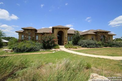 New Braunfels Single Family Home For Sale: 1315 Vintage Way