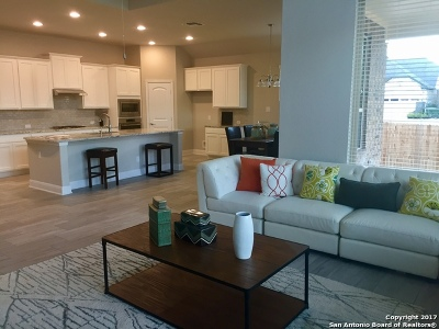 Bexar County Single Family Home New: 4834 La Santa Rd