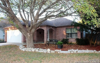 Guadalupe County Single Family Home New: 508 Wayward Pass