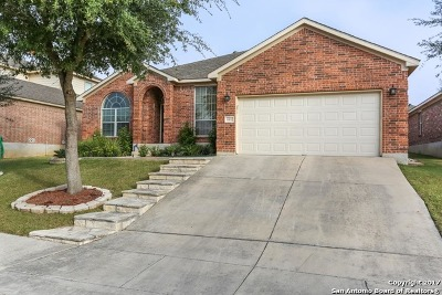 San Antonio Single Family Home For Sale: 4411 Nightfall Pass