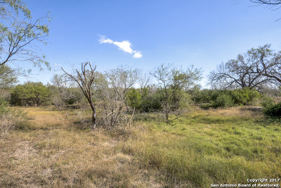 San Antonio Farm & Ranch For Sale: Mauermann Rd