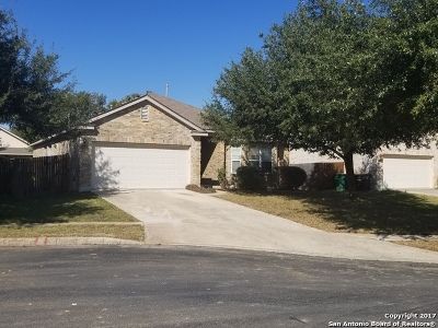 Helotes Single Family Home New: 8008 Eagle Peak