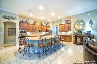 San Antonio Single Family Home Back on Market: 26003 Tivoli Meadow