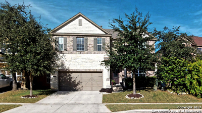 Boerne Single Family Home New: 228 Lone Star