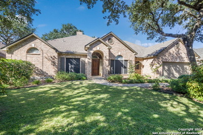 San Antonio Single Family Home New: 13411 Bow Heights Dr