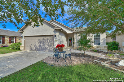 Bexar County Single Family Home New: 4542 Fort Boggy